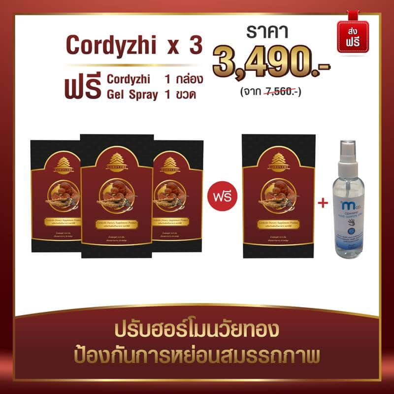 cordyzhi product-3 Valentine's Day